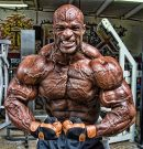 What is the training of Ronnie Coleman, basic principles and exercises