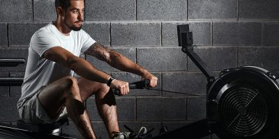 What muscles work on the rowing machine